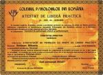 diploma121